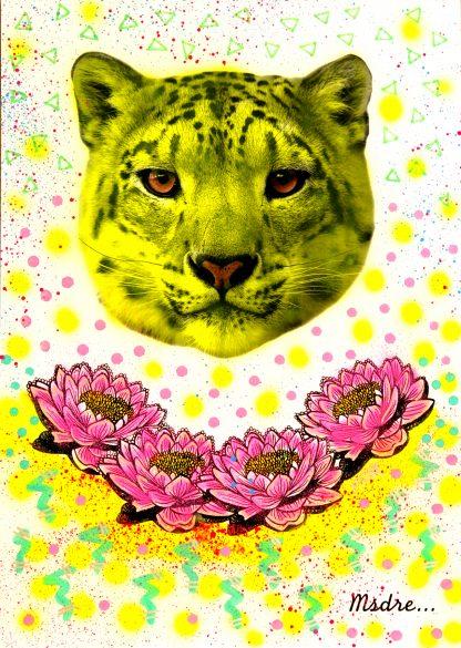 Msdre - Urban Leopard (Original)